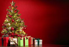 Image de l'article Guide Noël 2019 – 10 idées cadeaux 100% volley