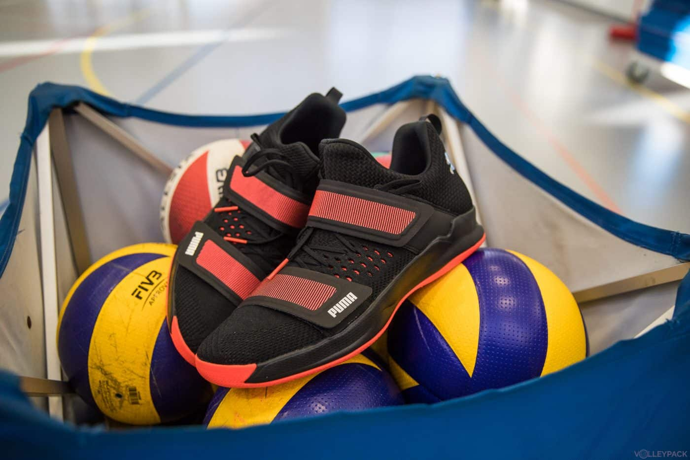 chaussure volley puma